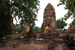 Άγαλμα του Βούδα, Wat Mahathat, Ayuthaya, Ταϊλάνδη Στοκ εικόνες με δικαίωμα ελεύθερης χρήσης