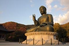 Άγαλμα χαλκού του Βούδα στο ναό Gakwonsa Στοκ Φωτογραφίες