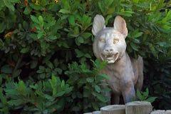 Άγαλμα jackal Στοκ Φωτογραφίες