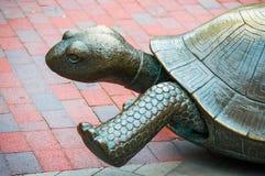 Άγαλμα Tortoise στην πλατεία Copley, Βοστώνη Στοκ Εικόνες