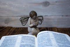 Άγγελος και Βίβλος Στοκ φωτογραφίες με δικαίωμα ελεύθερης χρήσης
