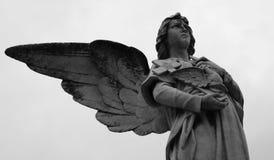 Άγγελος που στέκεται με το ιερό περιστέρι Στοκ εικόνα με δικαίωμα ελεύθερης χρήσης