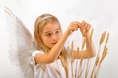 Άγγελος της γονιμότητας Στοκ εικόνες με δικαίωμα ελεύθερης χρήσης