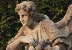 Άγγελος του θανάτου Στοκ εικόνες με δικαίωμα ελεύθερης χρήσης