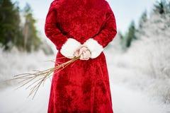 Άγιος Βασίλης με τη σημύδα στο χιονώδες δάσος στο δρόμο Στοκ Εικόνα