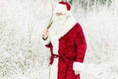 Άγιος Βασίλης με τη σημύδα στο χιονώδες δάσος Στοκ εικόνες με δικαίωμα ελεύθερης χρήσης