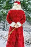 Άγιος Βασίλης με τη σημύδα Στοκ Φωτογραφίες