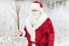 Άγιος Βασίλης στο χιονώδες δάσος με τη σημύδα Στοκ εικόνες με δικαίωμα ελεύθερης χρήσης