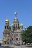 Άγιος-Πετρούπολη savior εκκλησιών αίματος Στοκ Φωτογραφίες