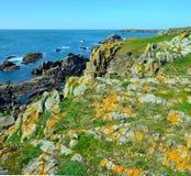 Άγρια ακτή του νότου του νησιού Yeu Στοκ εικόνα με δικαίωμα ελεύθερης χρήσης
