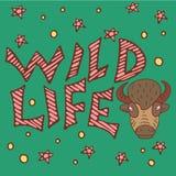 Άγρια αφίσα βούβαλων ζωής διανυσματική απεικόνιση