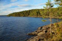 Άγρια - βρύο και λειχήνα που καλύπτονται - δύσκολη ακτή Στοκ φωτογραφία με δικαίωμα ελεύθερης χρήσης