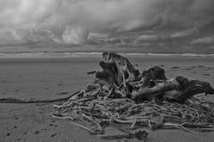 Άγρια ειρηνική παραλία δυτικών ακτών Στοκ Εικόνες