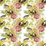 Άγρια εξωτικά πουλιά Watercolor στο άνευ ραφής σχέδιο λουλουδιών στο άσπρο υπόβαθρο Στοκ Φωτογραφίες