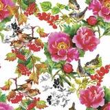 Άγρια εξωτικά πουλιά Watercolor στο άνευ ραφής σχέδιο λουλουδιών στο άσπρο υπόβαθρο Στοκ φωτογραφία με δικαίωμα ελεύθερης χρήσης