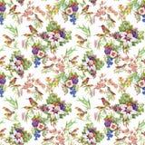 Άγρια εξωτικά πουλιά Watercolor στο άνευ ραφής σχέδιο λουλουδιών στο άσπρο υπόβαθρο Στοκ Φωτογραφία