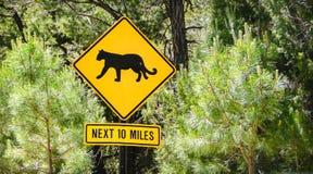 Άγρια ζώα σημαδιών Puma που διασχίζουν επόμενα 10 μίλια σημαδιών αμερικανικών δρόμων δασωδών περιοχών Στοκ φωτογραφία με δικαίωμα ελεύθερης χρήσης