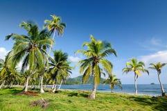 Άγρια κολομβιανή καραϊβική ακτή κοντά σε Capurgana στοκ φωτογραφία