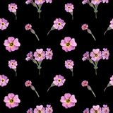 Άγρια λουλούδια Watercolor του άνευ ραφής σχεδίου της Σκωτίας Σκωτσέζικο primrose διανυσματική απεικόνιση