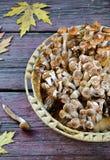 Άγρια μανιτάρια αγαρικών μελιού στο ξύλινο υπόβαθρο Στοκ Εικόνες