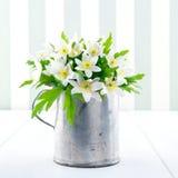 Άγρια λουλούδια άνοιξη σε ένα φλυτζάνι μετάλλων στο εκλεκτής ποιότητας υπόβαθρο Στοκ Εικόνες