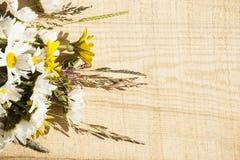Άγρια λουλούδια στο αγροτικό υπόβαθρο ξυλείας Στοκ εικόνες με δικαίωμα ελεύθερης χρήσης