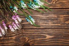 Άγρια λουλούδια στο ξύλινο υπόβαθρο Στοκ Εικόνες