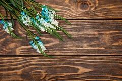 Άγρια λουλούδια στο ξύλινο υπόβαθρο Στοκ εικόνα με δικαίωμα ελεύθερης χρήσης