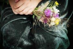 Άγρια λουλούδια Στοκ εικόνες με δικαίωμα ελεύθερης χρήσης