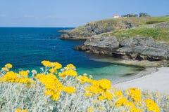 Άγρια παραλία στη Γαλλία Στοκ εικόνα με δικαίωμα ελεύθερης χρήσης