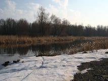 άγρια περιοχές άνοιξη φύση&sigmaf Στοκ εικόνα με δικαίωμα ελεύθερης χρήσης