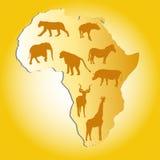 άγρια περιοχές ζώων της Αφρικής Διανυσματική απεικόνιση