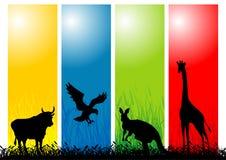άγρια περιοχές ζώων διανυσματική απεικόνιση