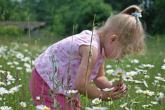 άγρια περιοχές παιδιών Στοκ φωτογραφία με δικαίωμα ελεύθερης χρήσης