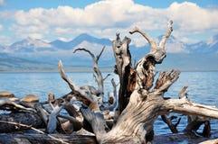άγρια περιοχές φύσης Στοκ Εικόνες