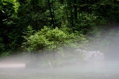 άγρια περιοχές φύσης στοκ φωτογραφία με δικαίωμα ελεύθερης χρήσης