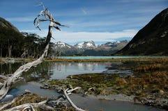 άγρια περιοχές φύσης στοκ εικόνα με δικαίωμα ελεύθερης χρήσης