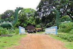 Άγρια πύλη στοκ φωτογραφία με δικαίωμα ελεύθερης χρήσης