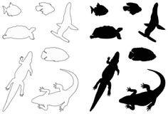 Άγρια σκιαγραφία ζώων θάλασσας ελεύθερη απεικόνιση δικαιώματος