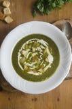 Άγρια σούπα σκόρδου και πατατών Στοκ φωτογραφίες με δικαίωμα ελεύθερης χρήσης