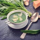 Άγρια σούπα σκόρδου με την παρμεζάνα Στοκ φωτογραφία με δικαίωμα ελεύθερης χρήσης