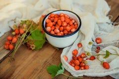 Άγρια φράουλα με το γάλα Στοκ φωτογραφίες με δικαίωμα ελεύθερης χρήσης
