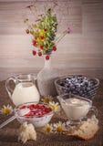 Άγρια φράουλα και βακκίνια Στοκ φωτογραφία με δικαίωμα ελεύθερης χρήσης