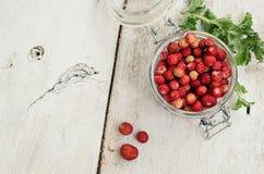 Άγρια φράουλα στο βάζο γυαλιού Στοκ Φωτογραφίες
