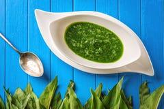 Άγρια φύλλα σκόρδου με τη σούπα κουταλιών και σκόρδου στο άσπρο πιάτο στο μπλε ξύλινο υπόβαθρο, υγιής τρόπος ζωής, εποχιακό χορτά Στοκ Εικόνα
