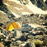 Άγριες αίγες βουνών κοντά στο στρατόπεδο αναρρίχησης βράχου βόρειο ossetia ρωσικά βουνών ομοσπονδίας Καύκασου alania Στοκ Φωτογραφία
