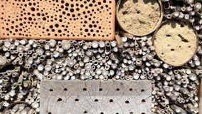 Άγριες μέλισσες που πετούν μπροστά από το ξενοδοχείο εντόμων για την απόμερη άγρια προστασία μελισσών Μέλισσες bicornis Osmia απόθεμα βίντεο