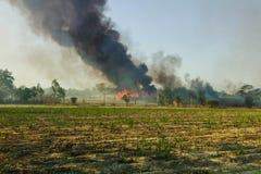 Άγριες πυρκαγιές που διαδίδουν στο ζαχαροκάλαμο των τομέων αγροτών και έχουν τις μεγάλες ομάδες καπνού στοκ φωτογραφία με δικαίωμα ελεύθερης χρήσης