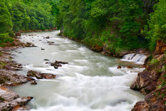 Άγριος ποταμός με έναν μικρό καταρράκτη στο δάσος Στοκ Φωτογραφία
