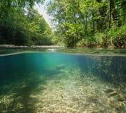 Άγριος ποταμός με την πράσινη βλάστηση κάτω από το νερό Στοκ φωτογραφία με δικαίωμα ελεύθερης χρήσης